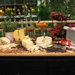 Cheese and Grapes Display