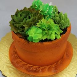 "5"" Flower Pot with Succulents Cake"